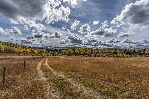 Canadees landschap van
