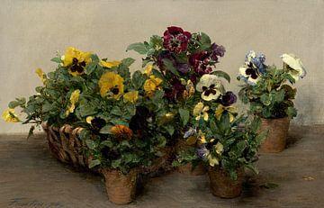 Viooltjes, Henri Fantin-Latour - 1874