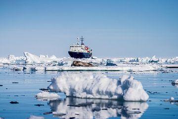 Rob (Zeehond) met op de voorgrond een ijsschots en op de achtergrond een schip op Spitsbergen van Merijn Loch