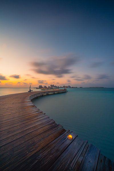 Maldives 4 sur Andy Troy