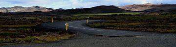 Landmannalaugar, Island von Willem van den Berge