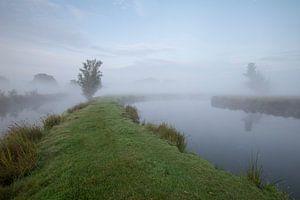 Een mistige ochtend in de polder