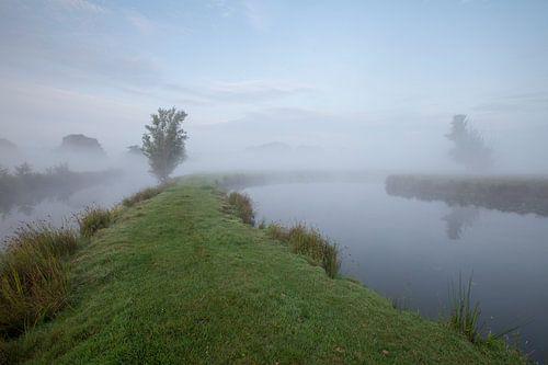 Een mistige ochtend in de polder van