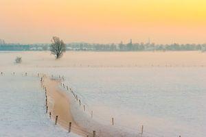 Besneeuwd winterlandschap bij zonsopgang van
