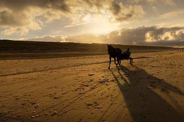 Strand landschap met sulky in Egmond van Marianne van der Zee