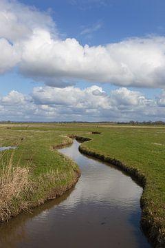 IJsselmeersloot van Ron van Elst