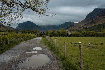 Eine unbefestigte Straße, die zum Lake Buttermere in Cumbria, England, führt. von Anges van der Logt