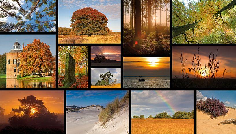 Collage landschap van Anton de Zeeuw