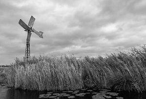 Een windmolen in de weerribben