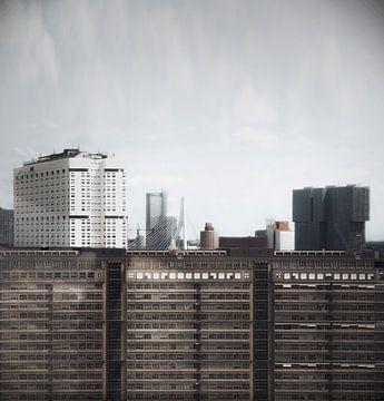 Rotterdam kop van zuid vanaf dijkzigt van vedar cvetanovic