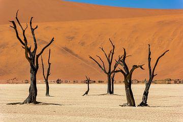 Sossusvlei Namibië (11) van Adelheid Smitt