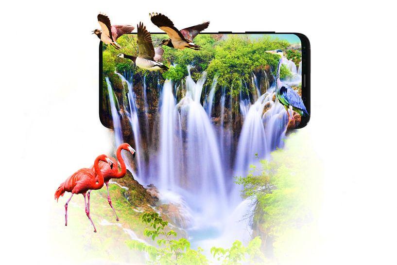 Wasserfall, der aus einem Smartphone kommt von Jennifer Hendriks