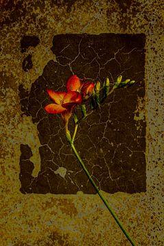 Nature morte avec des fleurs freesia sur Alie Ekkelenkamp