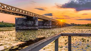 aufgegebene Eisenbahnbrücke von
