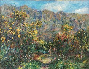 Landschaft mit Mimosas, Pierre-Auguste Renoir