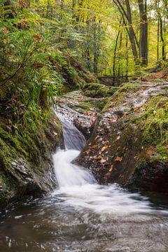 waterval in de Ardennen von Francois Debets