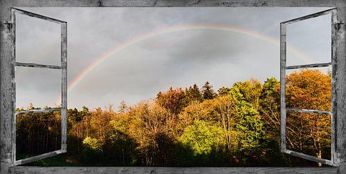 Venster uitzicht - Regenboog