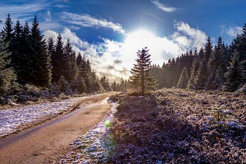 Wanderweg am Brocken