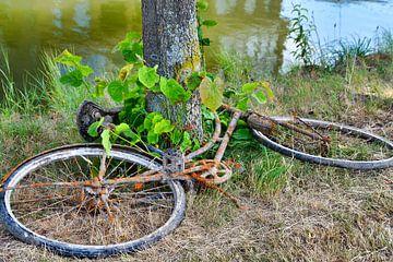 Roestige fiets uit het water van J..M de Jong-Jansen