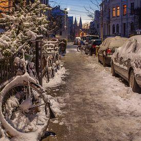 Fedelhören in de winter, Bremen van Torsten Krüger