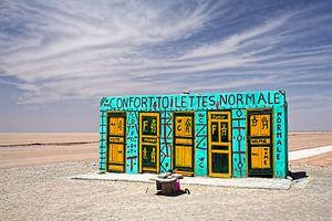 Felgekleurde Toiletten in de Woestijn van