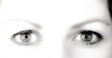 Ihr Augen von Norbert Sülzner