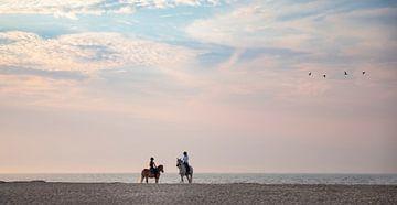 Paardrijders op een zomeravond in Vrouwenpolder 2 van Percy's fotografie