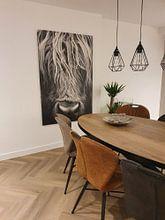 Klantfoto: Koe, Schotse Hooglanders, portret, closeup, schotland van Desiree Tibosch, op canvas