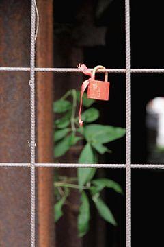 Locked van Berend Bosch