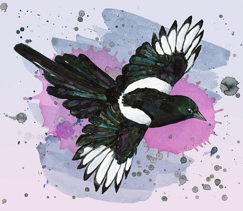 Een aquarel tekening van een vliegende ekster