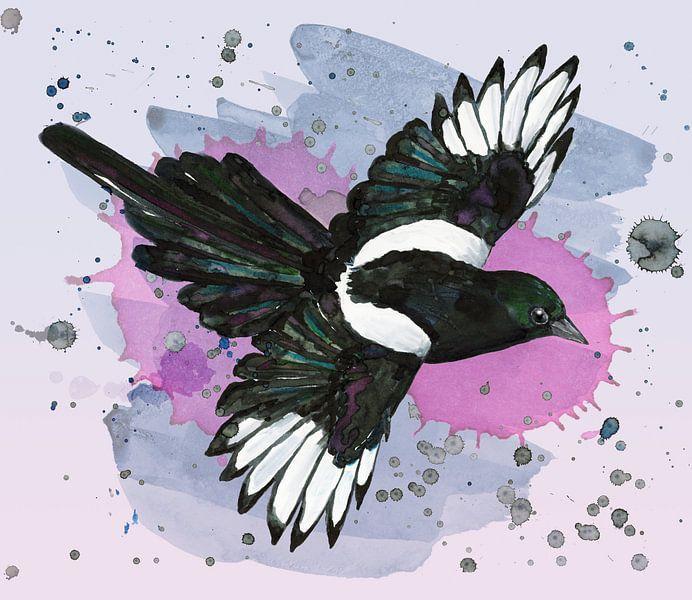 Eine Aquarellzeichnung einer fliegenden Elster von Bianca Wisseloo