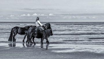 Aan het strand Noordwijk aan Zee van HvNunenfoto