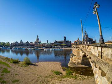 Gezicht op Dresden vanaf de oevers van de Elbe van Animaflora PicsStock