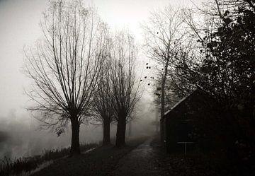 Mist van R. Khoenie