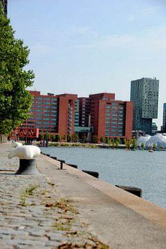 Architectuur in Rotterdam sur Georgina Fotografie