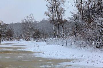 Besneeuwd landschap van