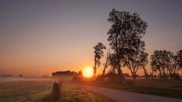 Zonsopkomst tijdens mistige ochtend von Erik Graumans