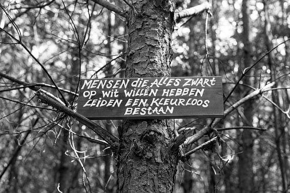 Zuid-Limburg / Brunssum / Zwart op Wit / 2013