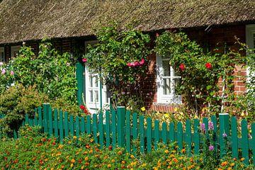 Reetgedecktes Bauernhaus im Bremer Blockland, Bremen, Deutschland, Europa von Torsten Krüger