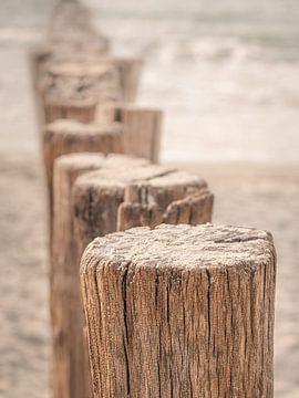 Paalhoofden close-up aan Zeeuws strand van Michel Seelen