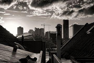 Het dak van Rotterdam von Vincent van Kooten