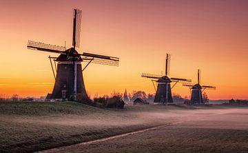 Windmills sur