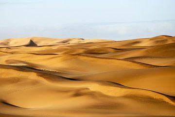 Dünen in der Namib van