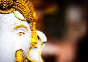 Ganesha van Bart van Woudenberg