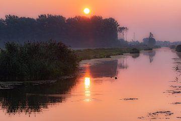 die Linge bei Sonnenaufgang von Tania Perneel