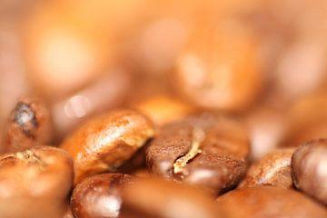 Kaffeebohnen von Dagmar Marina