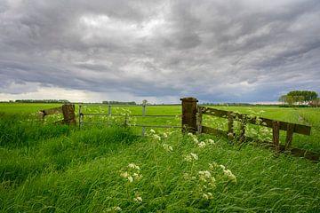 Stormwolken over frisgroene wei in de lente van Sjoerd van der Wal