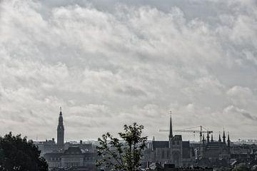 Skyline Löwen Bewölkt Morgen von Manuel Declerck