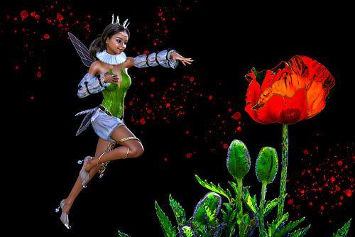 Little fairy - papaver - klaproos van ellenilli .
