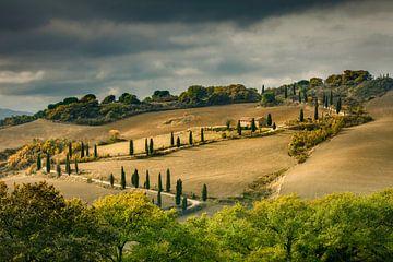 Toscaans landschap van Peter Bolman